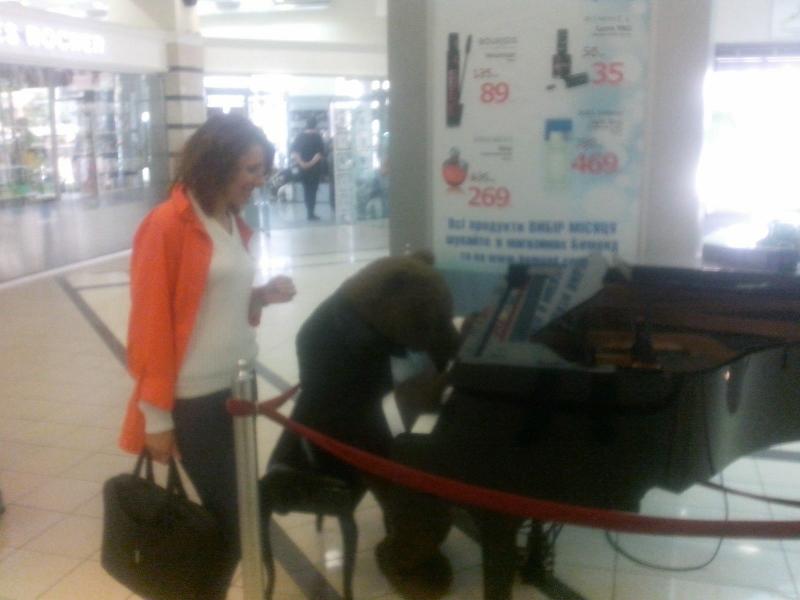 Ахтунг! Медведь за роялем...