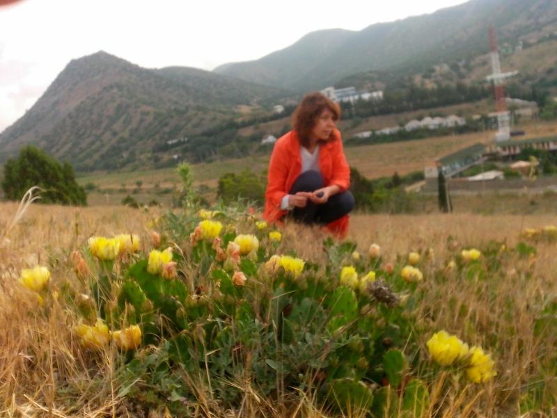 Наташа на фоне крымских гор и цветущих кактусов